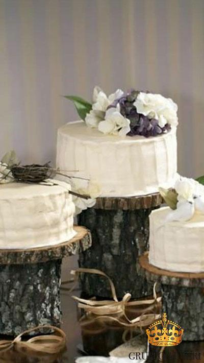 auteri torte tronchi